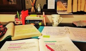 study (2)
